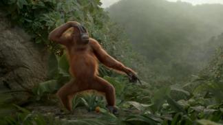 Rynkeby - Orangutan Dance